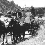 6 Horse and cart leads the runners away